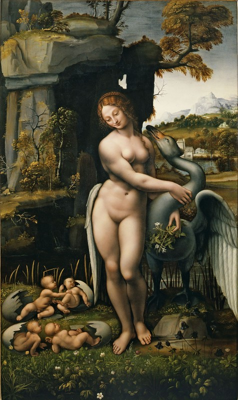 3 Francesco Melzi kopie naar davinci leda en zwaan Spiridon Leda copy probably by Francesco Melzi c 1515 Galleria degli Uffizi Florence 130x77.5 cm 476x800 Leda & the Swann   Polished works in the studio